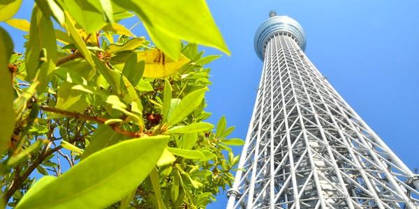 【東京自由行】2013東京行程規劃~六日慢慢玩‧女子的東京旅行《行程總覽篇》