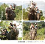 【Via帶你玩泰國】泰國桂河之旅(上)~大象村、Jungle Raft水上旅館篇
