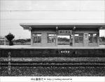 【台中遊記】台中追分車站~一個值得追味的老車站