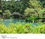 【溪頭森林遊樂區】溪頭一日遊~一起回味老森林的新魅力