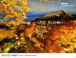 【京都賞楓景點推薦】京都紅葉名所~via的賞楓全記錄精彩分享!