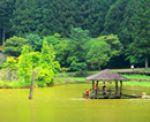 《13遊記》宜蘭一日遊景點「明池森林遊樂區」~暑假避暑勝地