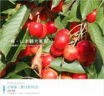 【小樽景點】夏旅北海道~「山本觀光果園」大啖鮮美水果的好去處!