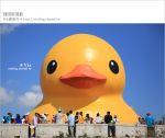 【桃園黃色小鴨】2013桃園地景藝術節~黃色小鴨+地景節!趕快來旅行~