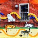 【雲林旅遊景點】雲林貓彩繪村~頂溪社區屋頂上的貓《13遊記》