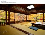 【京都賞楓景點】京都琉璃光院~美翻!日式屋廊與紅葉結合的美景!