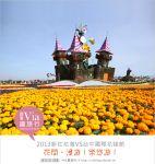 【台中新社花海2013】台中新社花海+2013台中國際花毯節~最新花況搶先看!