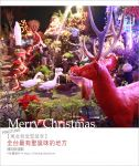 【萬金聖誕季】屏東萬金教堂/萬金聖母聖殿~閃亮!聖誕節週邊點燈造景