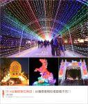 【2014台灣燈會】2014台灣燈會一日遊~跟著via南投中興新村賞燈趣!