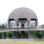 【台東景點】台東國際地標~海濱公園生命之樹《13遊記》