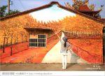【關廟彩繪村】新光里彩繪村~在北寮老街裡散步‧遇見全台最藝術風味的彩繪村