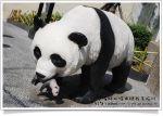 【台北市立動物園】台北木柵動物園貓熊~團團圓圓熊貓一日遊