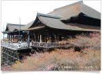 【京都春櫻旅】京都旅遊景點必訪~京都清水寺之美