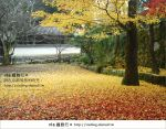【京都紅葉名所】via的京都紅葉紀行*絕美紅葉地毯~南禪寺
